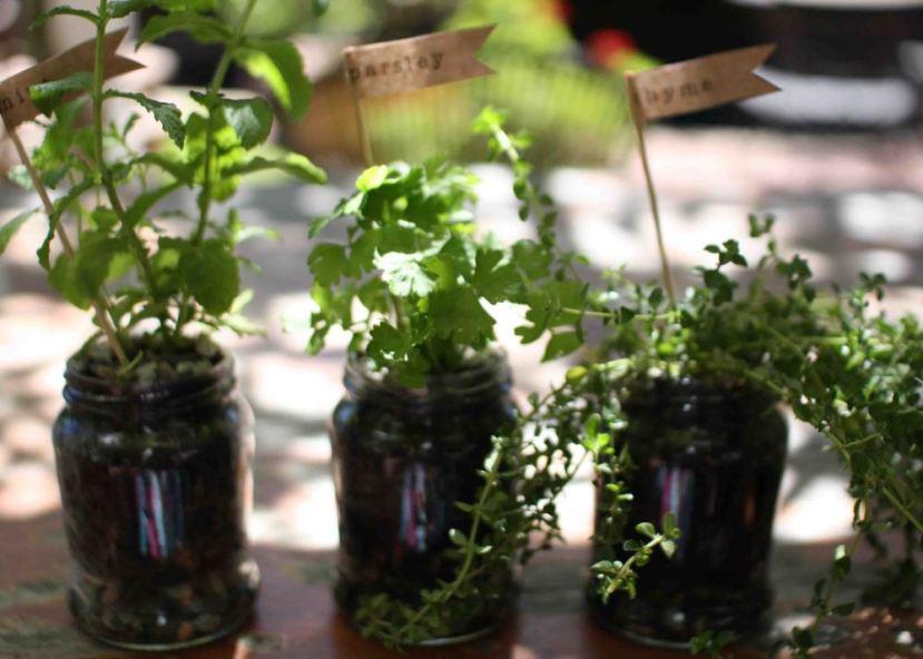 herb-jars